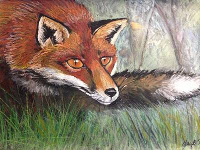 Red Fox Mixed Media - Sneaky Fox by Skye Wieland
