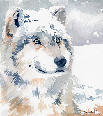 Painting - Snow Wolf by Sean Parnell