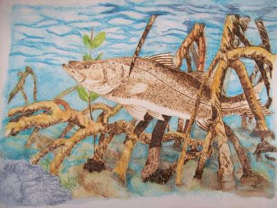 Snook Original Pyrographic Art On Paper By Pigatopia Art Print by Shannon Ivins
