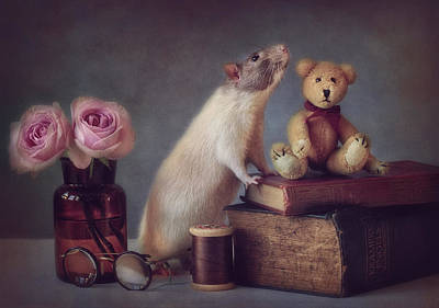 Rodent Wall Art - Photograph - Snoozy And Friend by Ellen Van Deelen