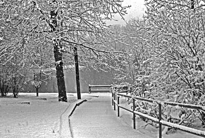 Art Print featuring the photograph Snow Along The Path by Andy Lawless