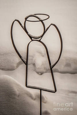 Photograph - Snow Angel by Grace Grogan