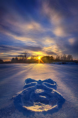 Red Leaves Snow Wall Art - Photograph - Snow Angel by Phil Koch