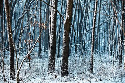 Snow At Dusk Art Print by Tim Michael
