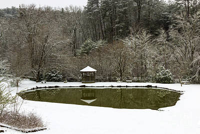 Snow At The Pond Art Print