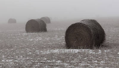 Photograph - Snow Bales by Sarah Boyd