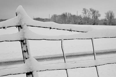 Woven Wire Photograph - Snow Barbs by Sam Perry