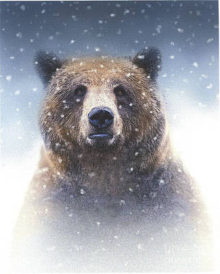 Bruins Painting - Snow Bear by Robert Foster