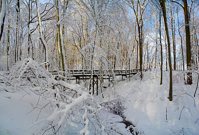 Photograph - Snow Bridge by Raymond Salani III