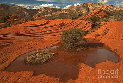 Photograph - Snow Canyon Pothole by Adam Jewell