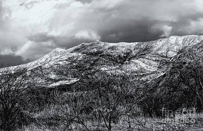 Mark Myhaver Rights Managed Images - Snow Capped 45 Royalty-Free Image by Mark Myhaver