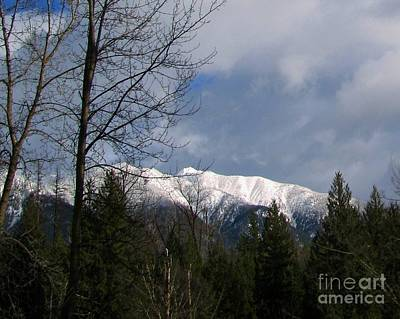 Photograph - Snow Capped by Leone Lund