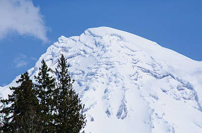 Mt. Massive Photograph - Snow Cone Mountain Top by Tikvah's Hope