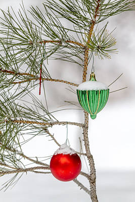 Photograph - Snow Covered Christmas Ornaments by Teri Virbickis