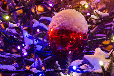 Snow Covered Christmas Tree And Red Ball With A Cup Of Snow - Featured 3 Print by Alexander Senin