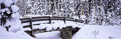Cold Temperature Photograph - Snow Covered Footbridge In A Forest by Panoramic Images