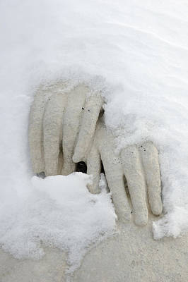 Photograph - Snow Covered Hands Of A Statue by Matthias Hauser
