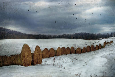 Snow Covered Hay Bales Art Print by Kathy Jennings