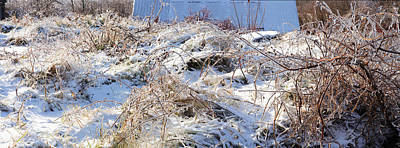 Richelieu Photograph - Snow Covered Hill by Panoramic Images