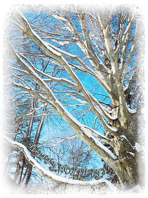 Photograph - Snow Covered Holiday  by Shawna Rowe