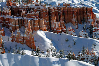 Alpine Photograph - Snow Covered Hoodoos And Trees 2 by Brett Pelletier