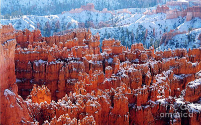 Photograph - Snow Covered Hoodoos by Sharon Seaward