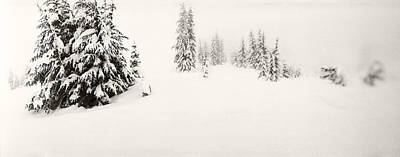 Snow Covered Landscape At Stevens Pass Print by Panoramic Images