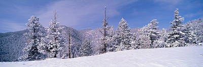 Snow Covered Landscape, Colorado, Usa Art Print by Panoramic Images