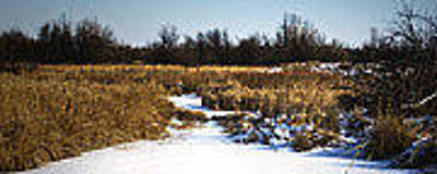 Photograph - Snow Covered Path by Don Durfee