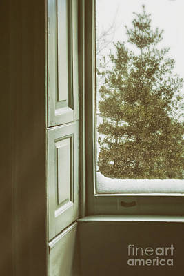 Old Home Place Photograph - Snow Covered Pine by Margie Hurwich