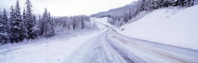 Cold Temperature Photograph - Snow Covered Road In Winter, Haines by Panoramic Images
