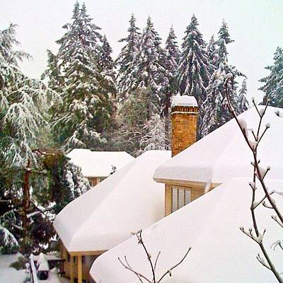 Apple Wall Art - Photograph - Snow Covered Rooftops - Winter In Lake Oswego Or by Anna Porter