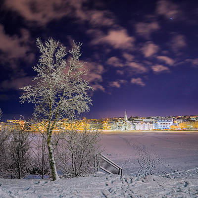 Snow Covered Trees Photograph - Snow Covered Trees And Frozen Pond by Panoramic Images