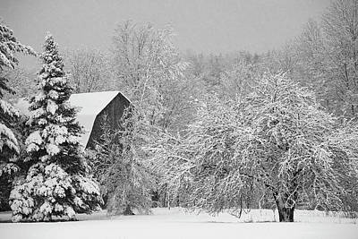 Barns In Snow Photograph - Snow Covered Trees And Rooftop by David Chapman