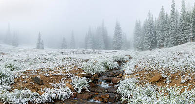 Snow Covered Trees In Hidden Valley Art Print