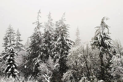 Photograph - Snow Covered Trees Landscape by Peggy Collins