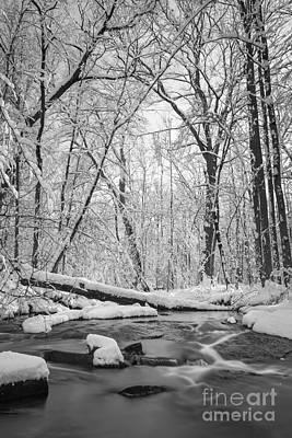 Snow Creek Bw Original