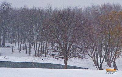 Photograph - Snow Day by Chris Berry