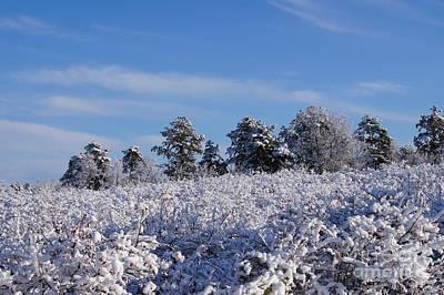 Keith Richards - Snow day by Jeffery L Bowers