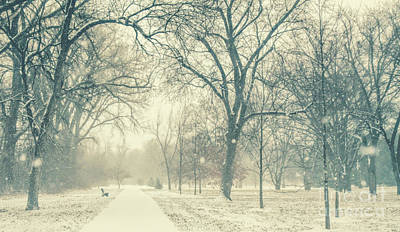 Photograph - Snow Day by Pam  Holdsworth