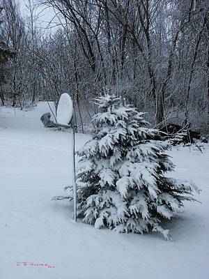 Photograph - Snow Dish II by R B Harper