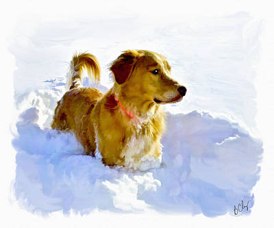 Art Print featuring the photograph Snow Dog by Bradley Clay
