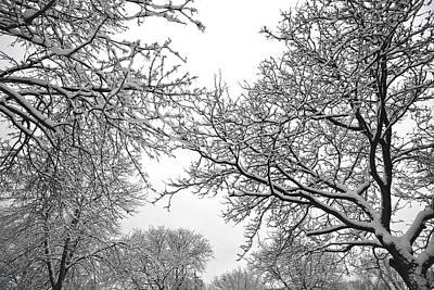 Photograph - Snow by Dragan Kudjerski
