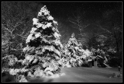 Digital Art - Snow Dream by Angel Cher