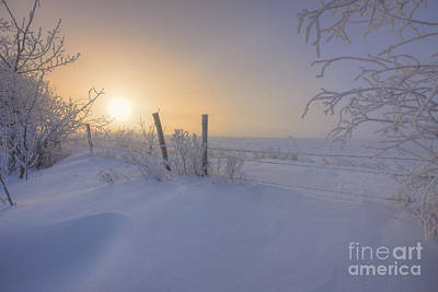 Snow Drifts And Barbed Wire Art Print by Dan Jurak