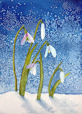 Snow Drops Painting - Snow Drops by Lita Harris