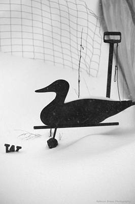 Weathervane Photograph - Snow Duck by Becca Brann