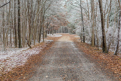 Photograph - Snow Dust Path by Terry DeLuco