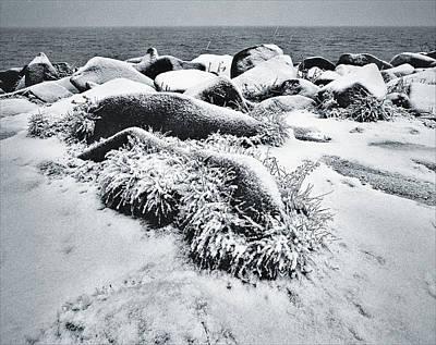 Photograph - Snow Fall by Vladimir Kholostykh