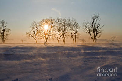 Photograph - Snow Fields by Butch Lombardi
